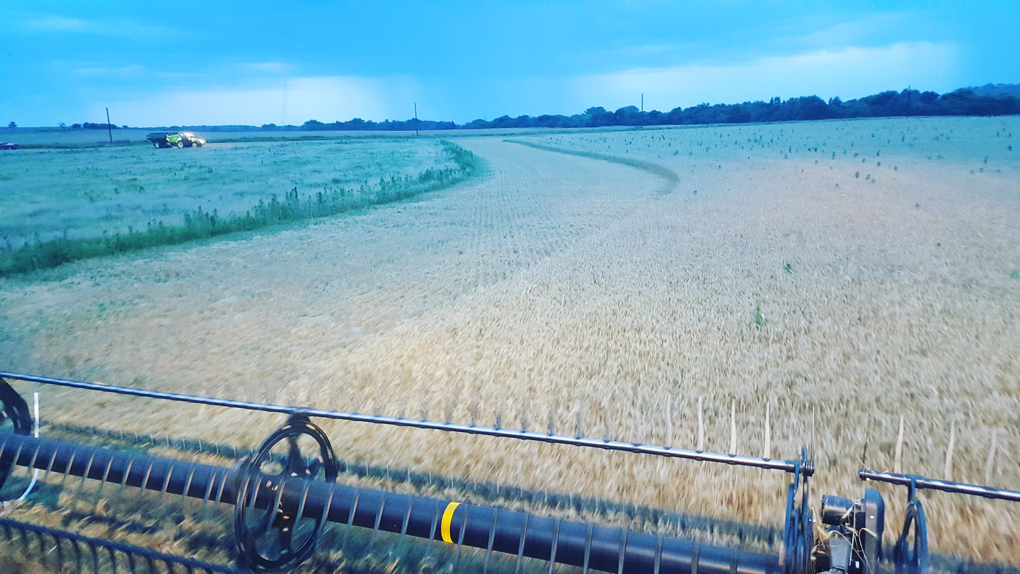 Schemper 2017 - Oklahoma Wheat Harvest