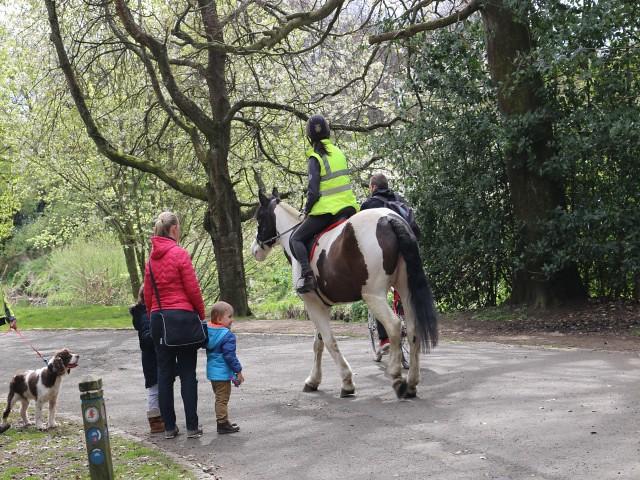 pollok park obiective turistice Glasgow 2