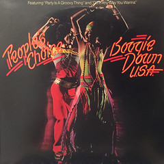 PEOPLE'S CHOICE:BOOGIE DOWN USA(JACKET A)