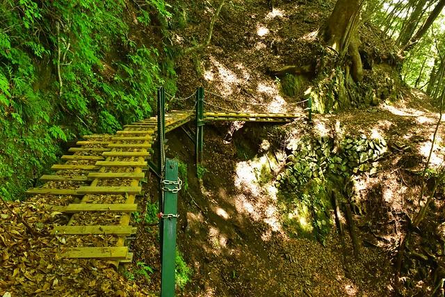 畦ヶ丸 木道の登山道