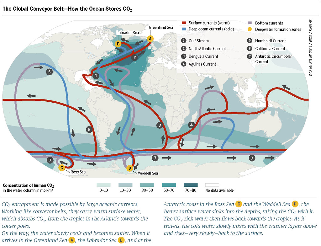 The global conveyor belt how the ocean stores co2 flickr the global conveyor belt how the ocean stores co2 by boellstiftung gumiabroncs Images