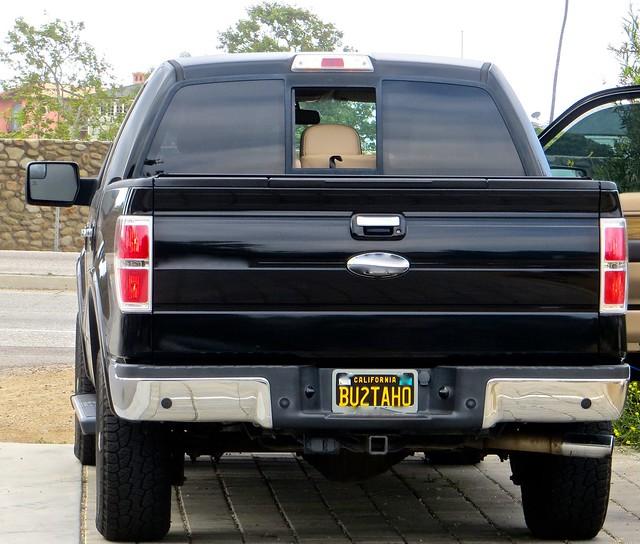 bu plate tahoe edition