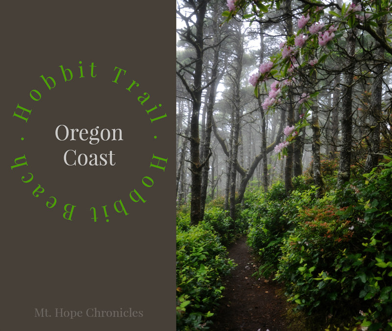 Hobbit Trail, Oregon Coast @ Mt. Hope Chronicles
