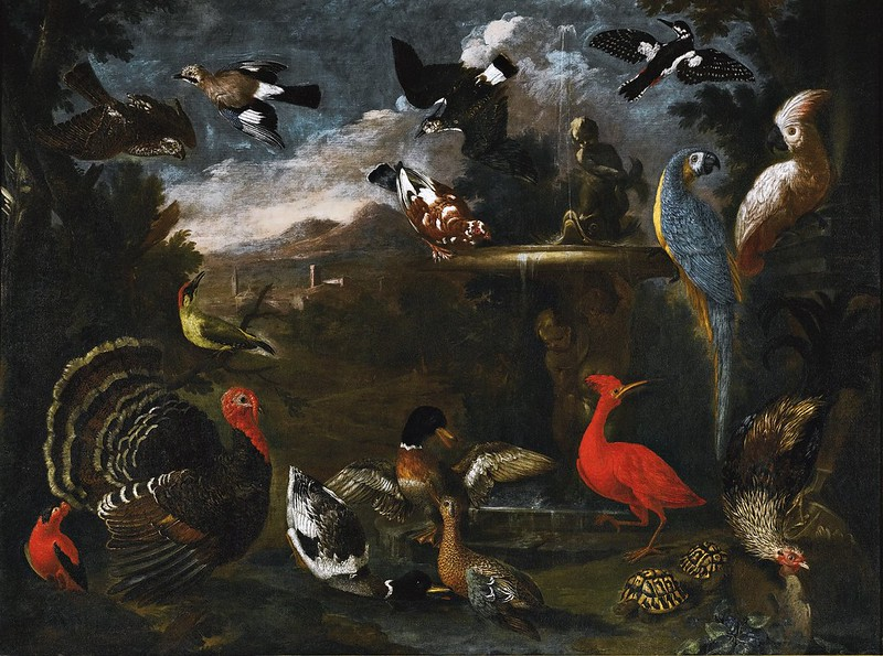 Andrea Scacciati - An ornamental fountain with parrots, ducks, a turkey, falcon and other birds together with two tortoises, an extensive landscape beyond
