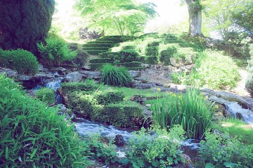 Jardin floral d'Apremont sur Allier (12)