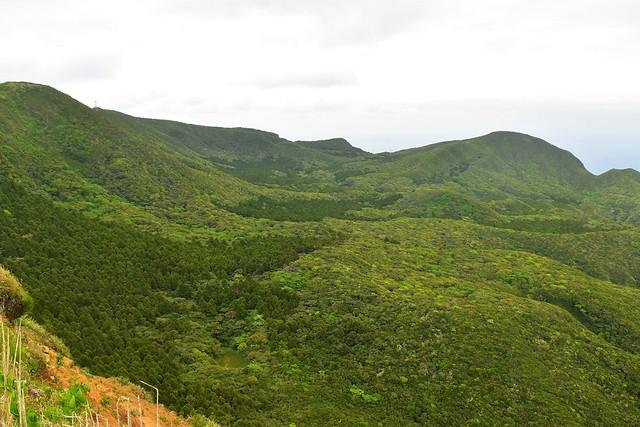 八丈島・三原山 緑豊かなカルデラ