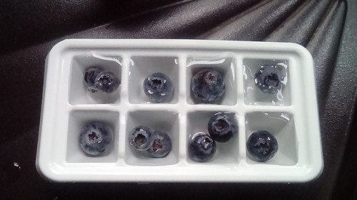 Blueberry icecubes