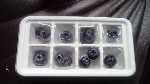 Blueberry icecubes