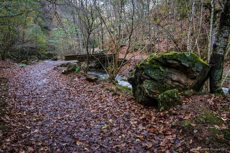 Río Iñarbegi cerca de la Cascada de Xorroxin