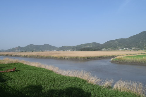 Suncheon Bay Wetland (5) | by markvale2