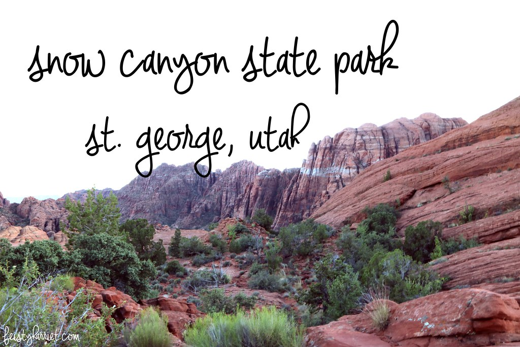 Snow Canyon State Park_feistyharriet_InstaMeet St George_May 2017 (13)