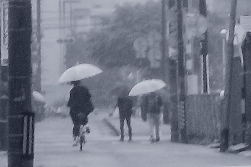 Blue rain. Monochrome