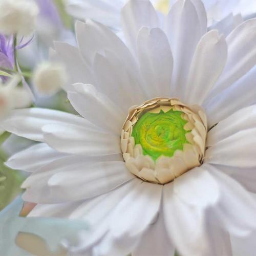 Paper Gerbera Daisy Flower