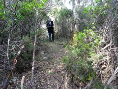 Le chemin après la traversée du ravin de Pinetu Pianu