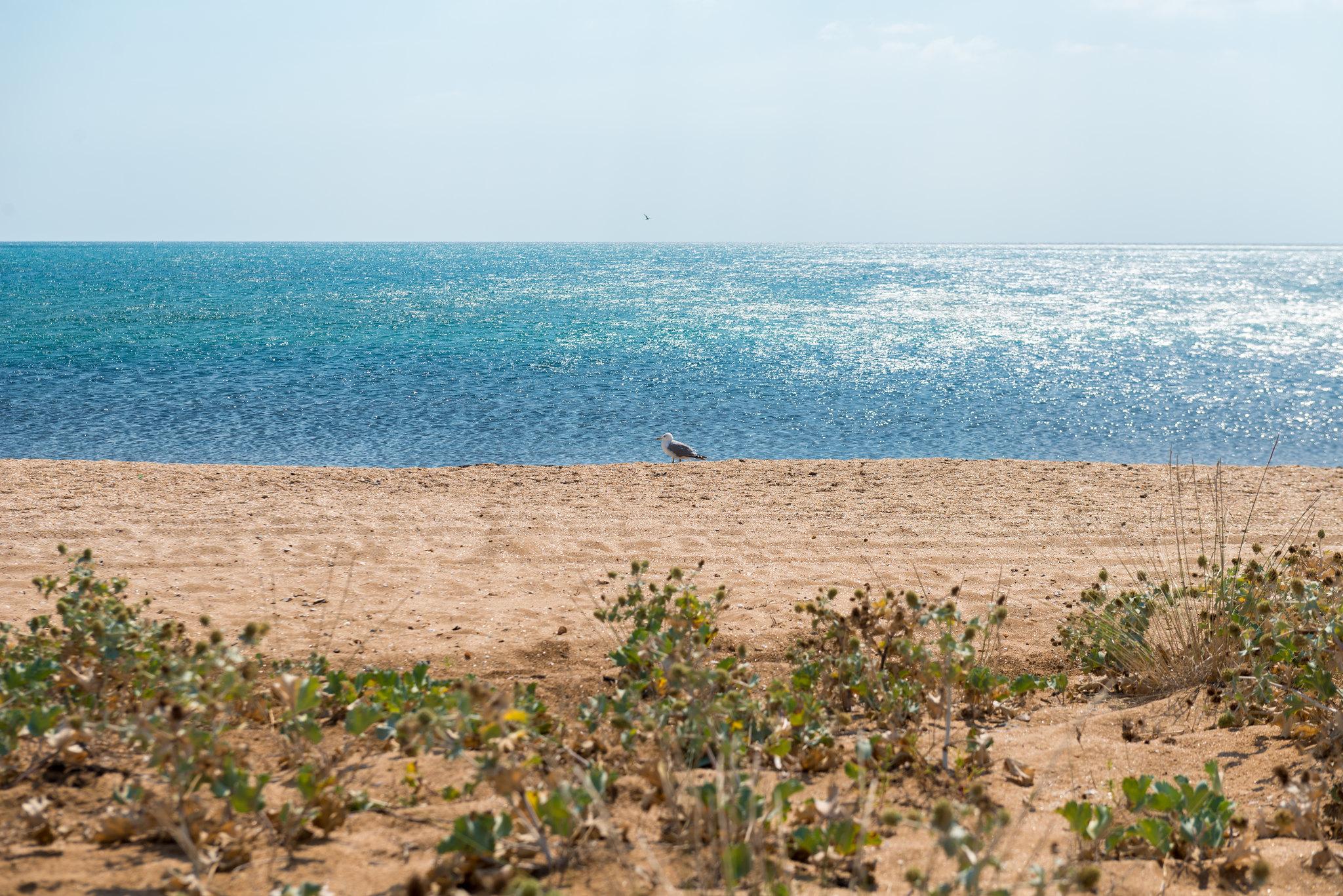 Relatório aponta impactos das mudanças do clima no litoral do país