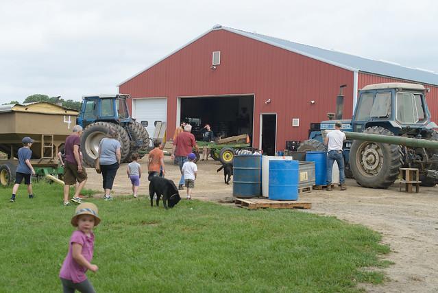 goat farm-1