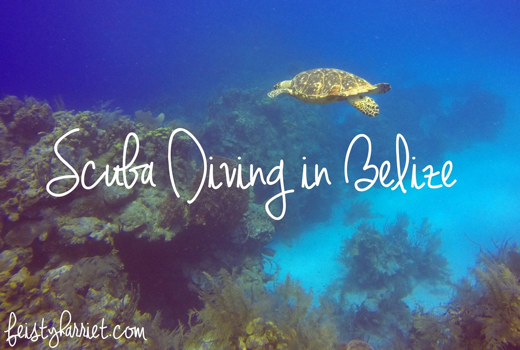 Scuba Belize 4_feistyharriet_April 2017