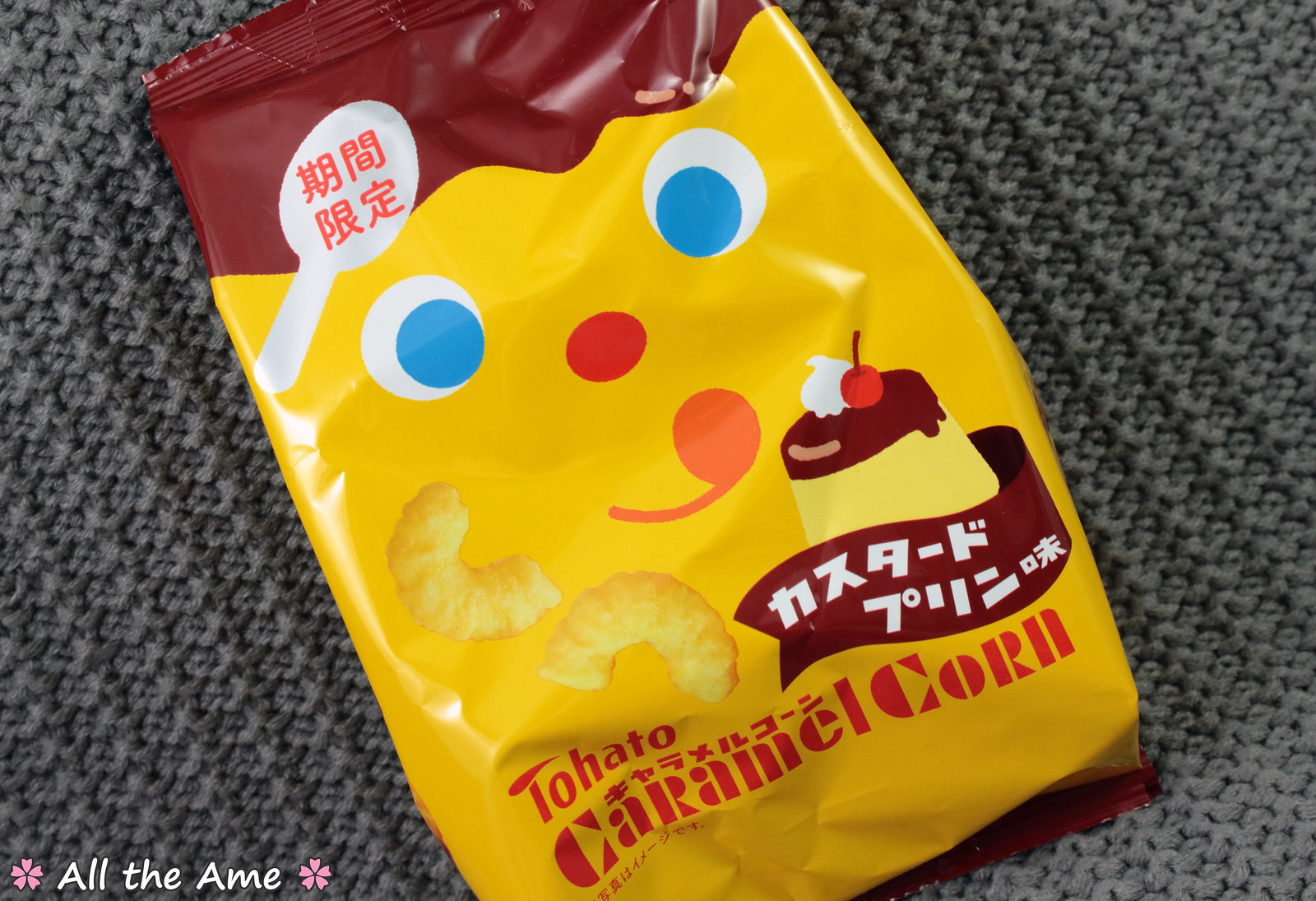 Tohato Caramel Corn Pudding