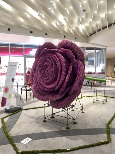 巨大なバラの花