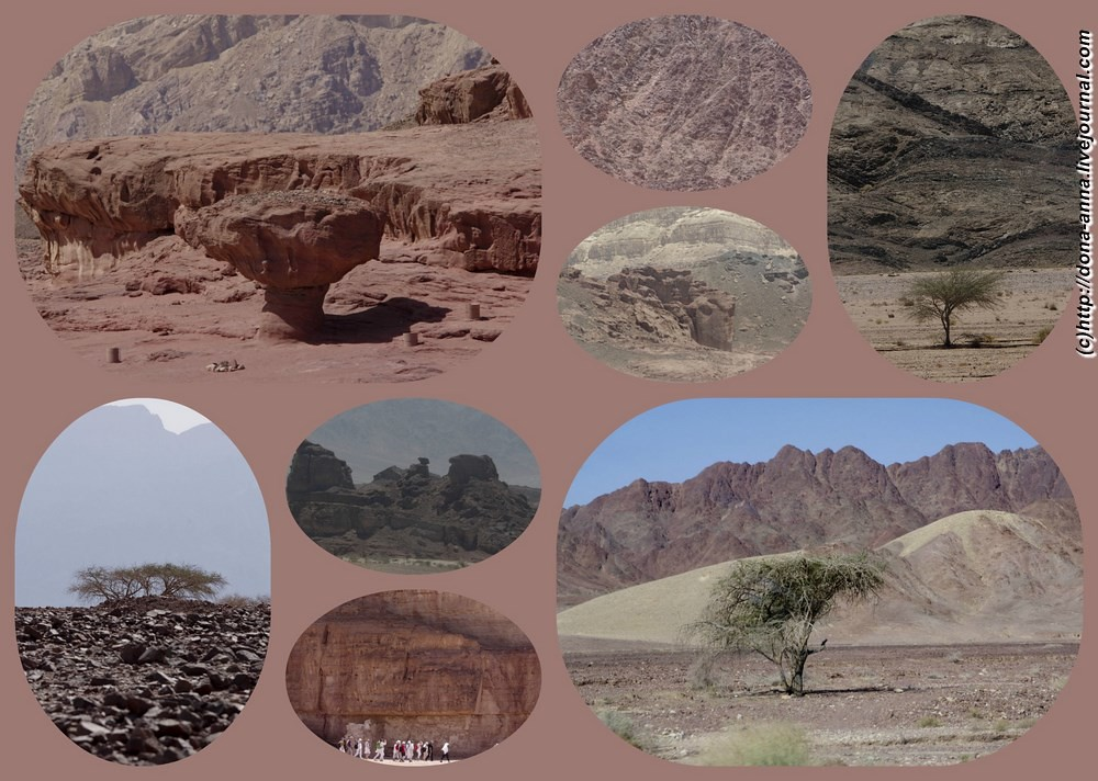 Timna-collage1-a