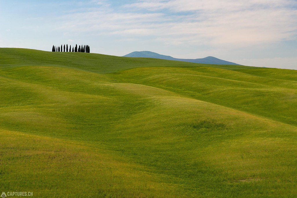 Waved hills - Tuscany