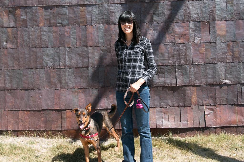 Dog-friendly Bodie
