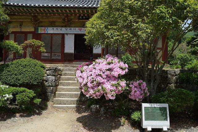 Seonamsa Temple (51)