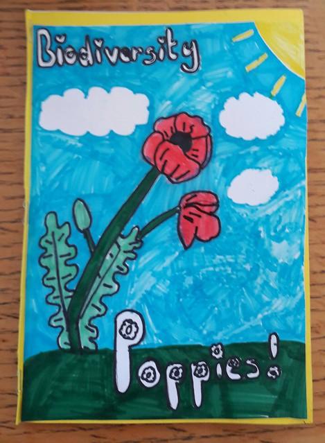 5th class design Biodiversity Books!