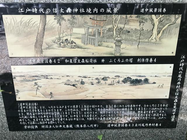 shinodanomorikuzunohajinja22