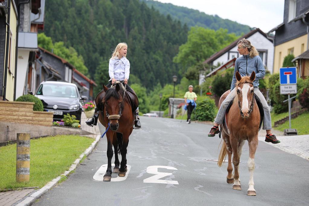 Анимал пас секс с конём