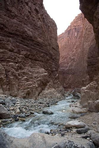 Wadi Zarkee Main