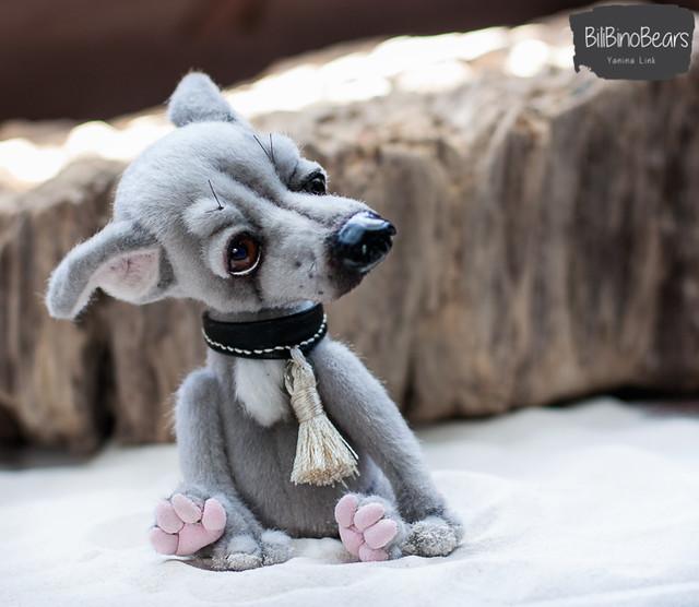 """greyhound """"Karma"""""""