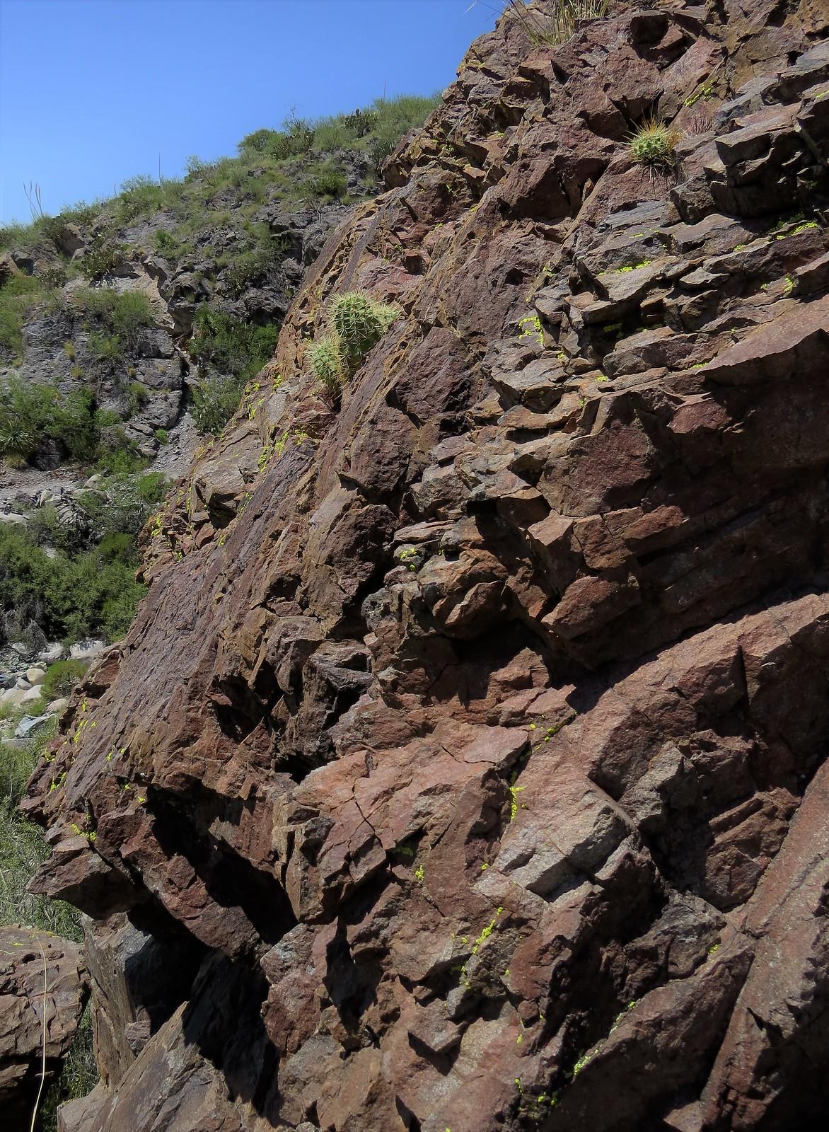 La Cueva trail, Organ Mountains, NM