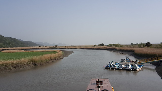 Suncheon Bay Wetland (21)