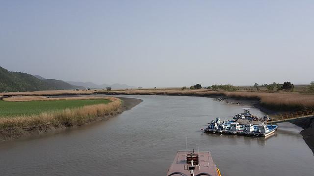 Suncheon Bay Wetland (21)