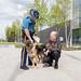 Alaska State Trooper Detector Canine Academy 2017 Graduates thumbnail photo