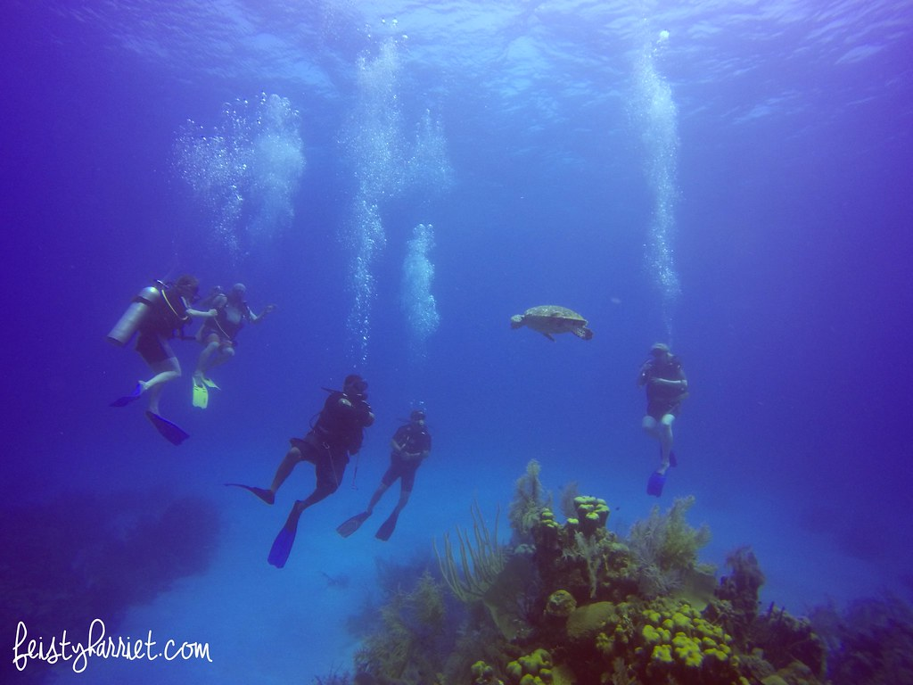 Scuba Belize 3_feistyharriet_April 2017