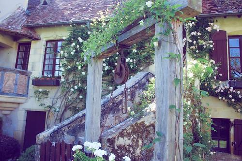 Jardin floral d'Apremont sur Allier (20)