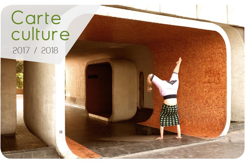 carte_Culturec2017-rond