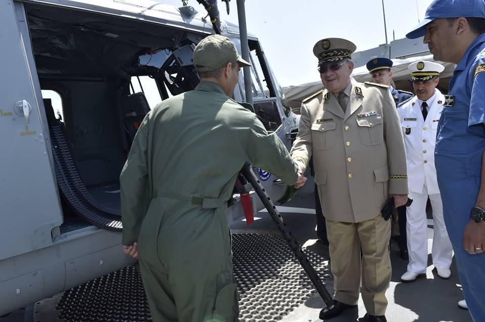 Armée Algérienne (ANP) - Tome XIV 34864245735_a04b2d588a_o