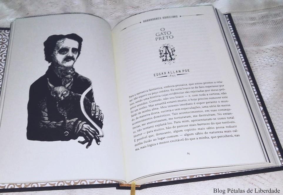 O-Gato-Preto, Edgar-Allan-Poe, darkside, ilustração