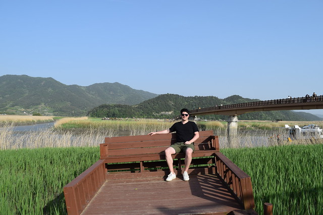 Suncheon Bay Wetland (1)
