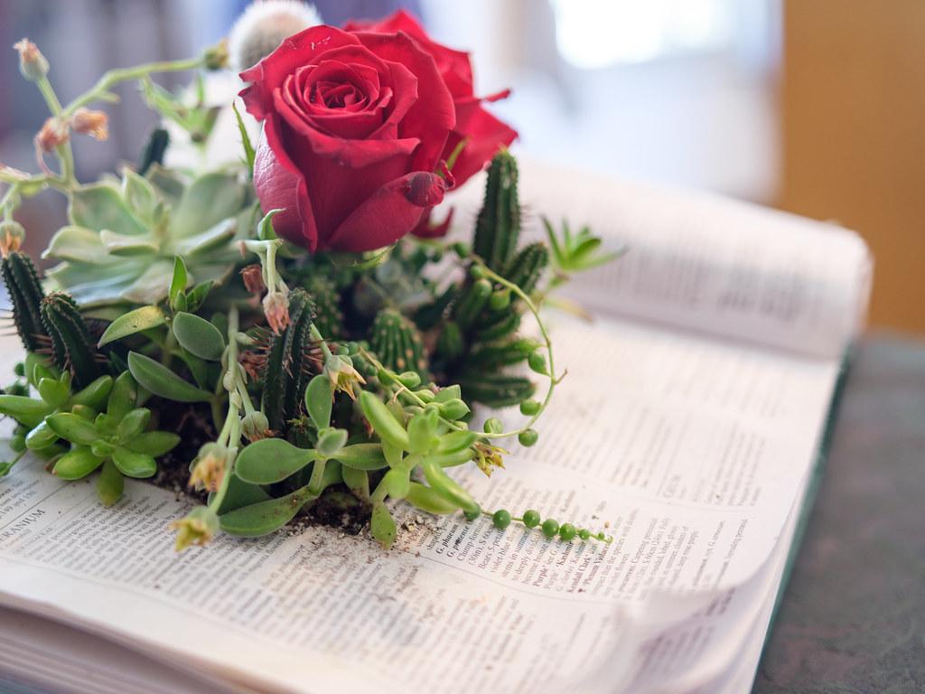 花と器のハーモニー2017⑮