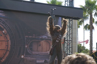 Star Wars: A Galaxy Far, Far Away: Chewbacca | by Disney, Indiana
