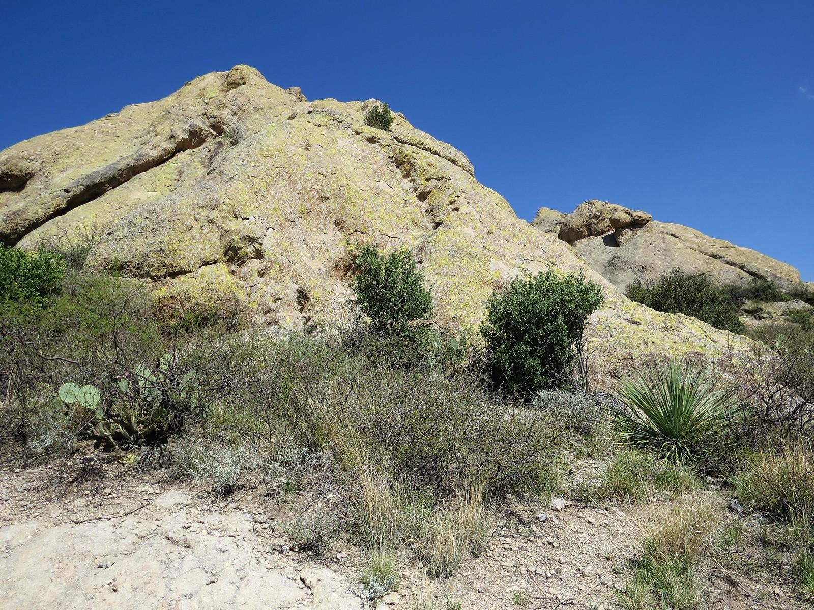 La Cueva Rocks, Organ Mountains, NM