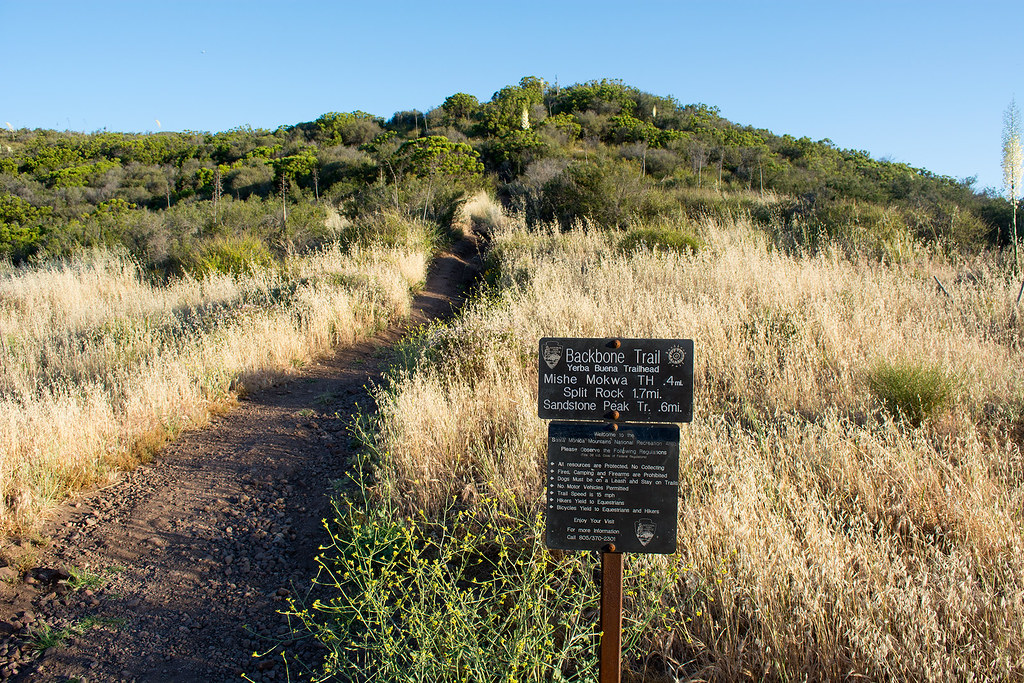 The Mishe Mokwa Trail (1 of 13)