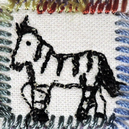 24_zebra