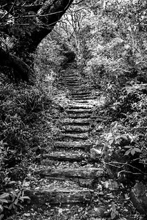 stairway | portmeirion | north wales | by John FotoHouse