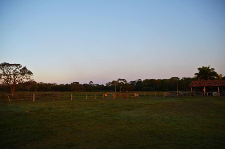 dawn18