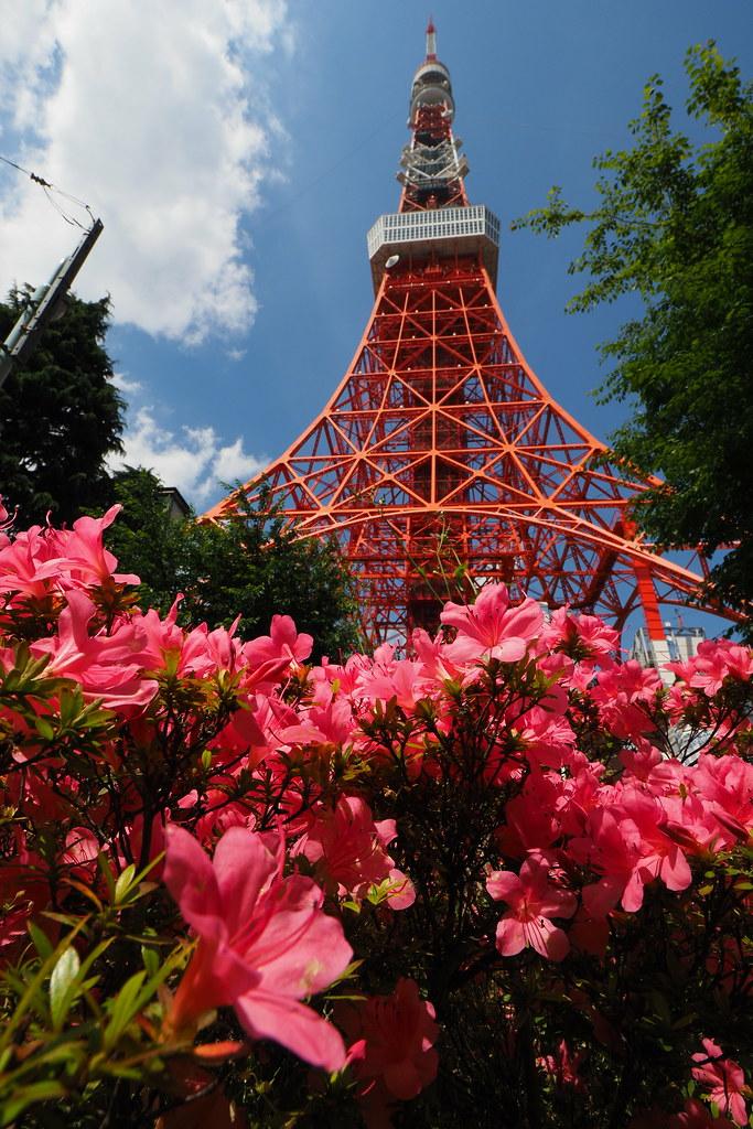 東京鐵塔|東京遊記 Tokyo trip